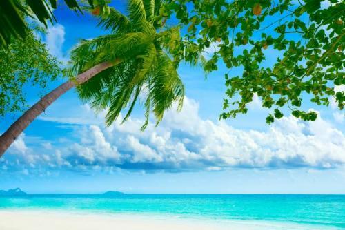 Пляжи 6310