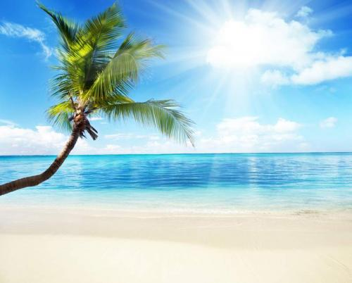 Пляжи 6335