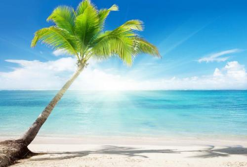 Пляжи 6338
