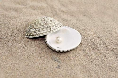 Пляжи 6349