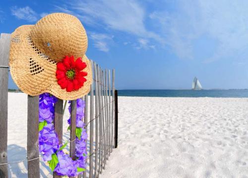Пляжи 6350