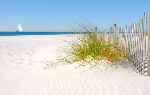 Пляжи 6356