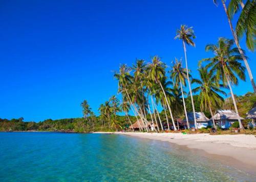 Пляжи 6361