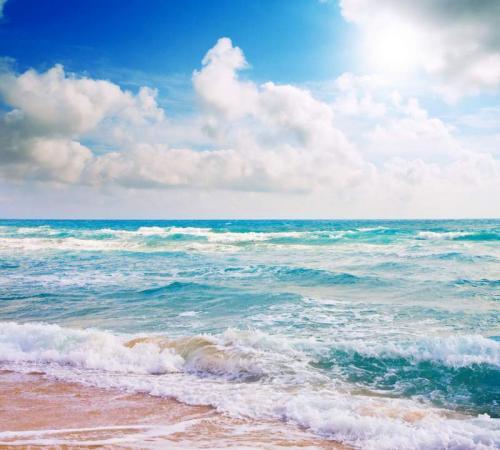 Пляжи 6362