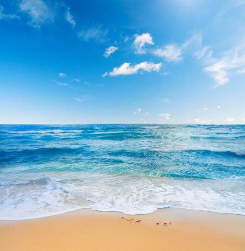 Пляжи 6382