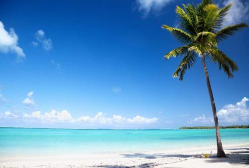 Пляжи 6390