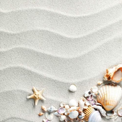 Пляжи 8290