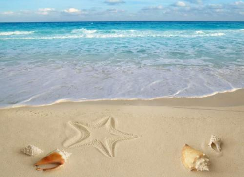 Пляжи 9643