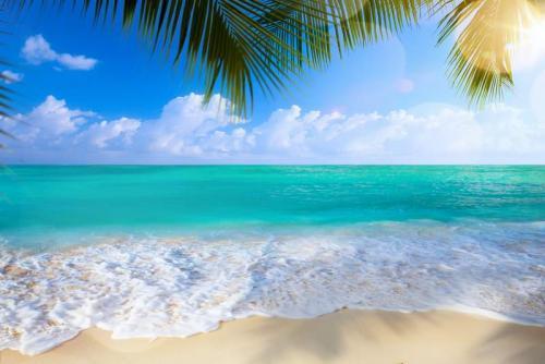 Пляжи 9646