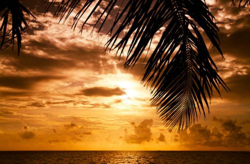 пляжи 351