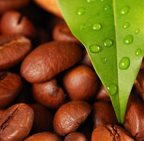 Кофе 12 1