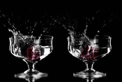Напитки 3102
