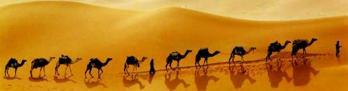 Египет 1005