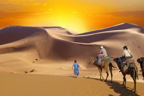 Египет 1701