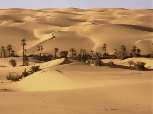 Египет 996