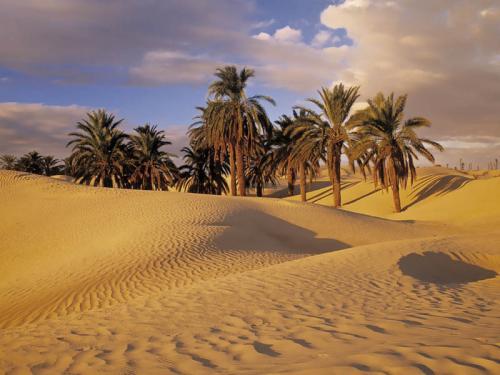 Египет 997