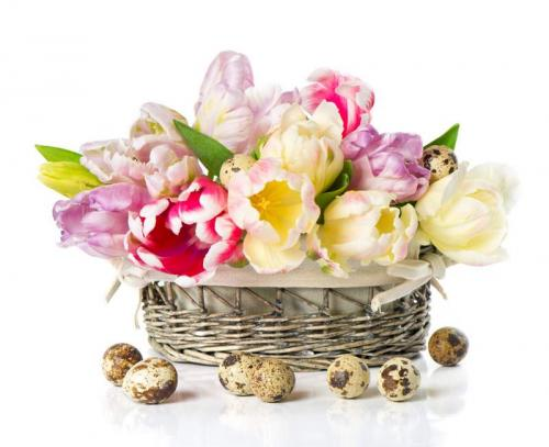 Цветы 5199