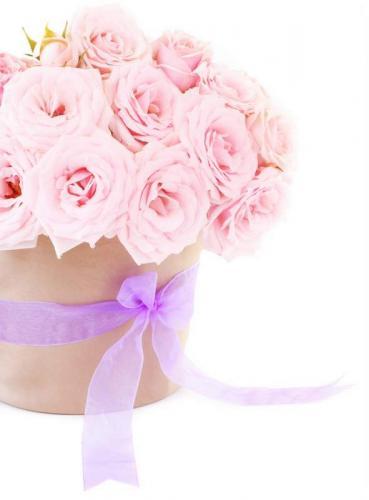 Цветы 5203