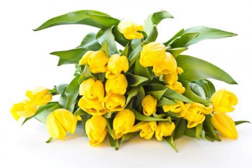 Цветы 5207