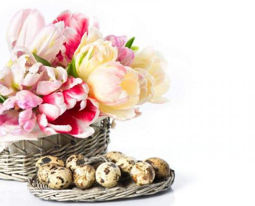 Цветы 5220