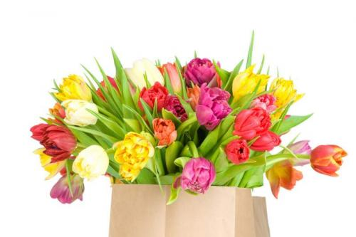 Цветы 5228