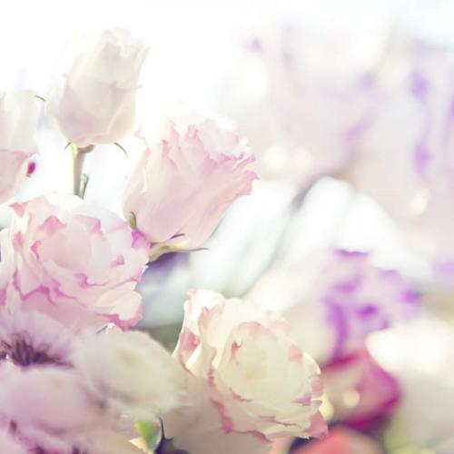 Цветы 5245