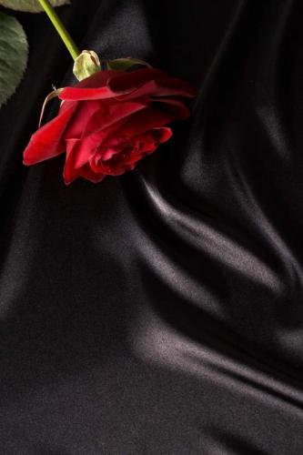 Цветы 5303