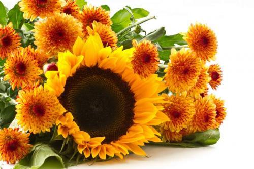 Цветы 5328