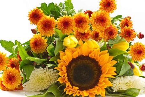 Цветы 5334