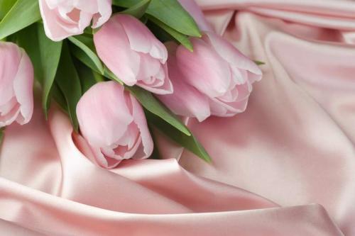 Цветы 5338