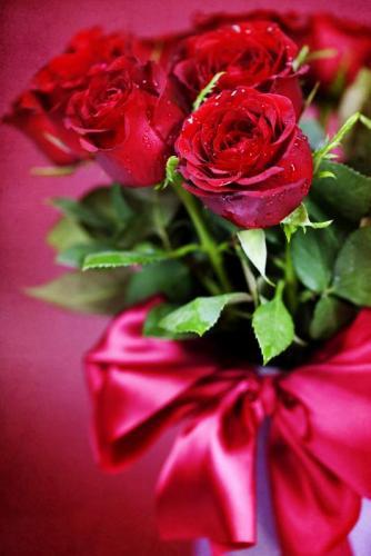 Цветы 5348