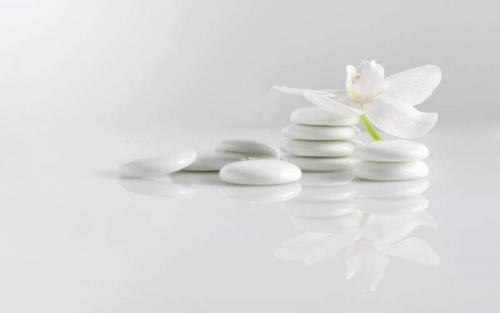 Цветы 7940