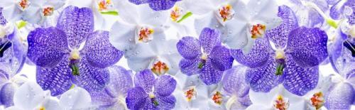 Цветы 8012