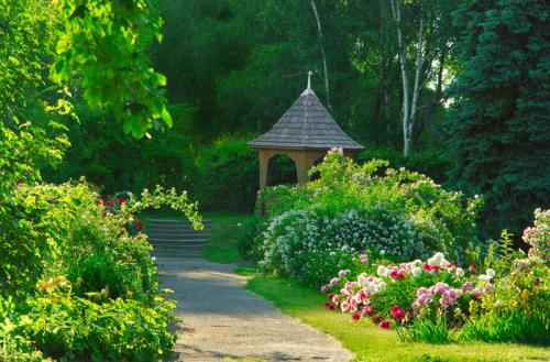Сады 1222