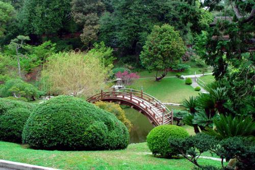 Сады 1962
