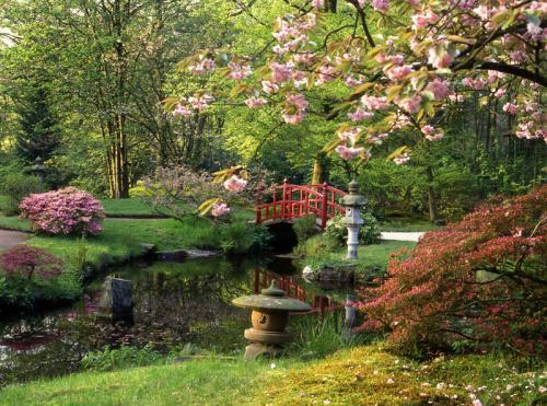 Сады 1966