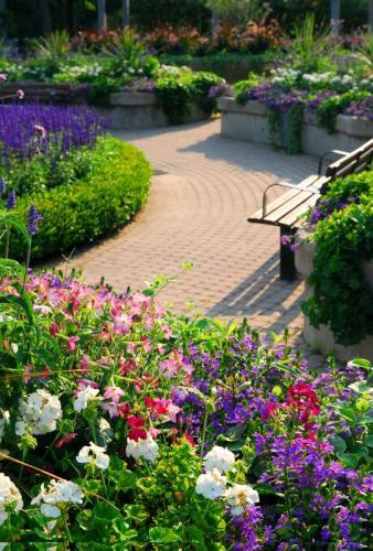 Сады 5762