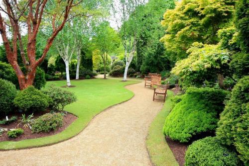Сады 5768