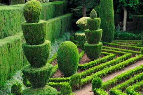 Сады 5770