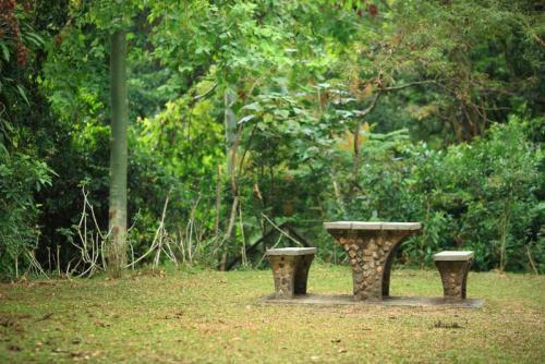 Сады 5771