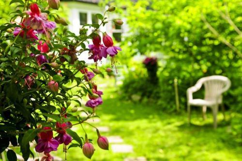 Сады 5777