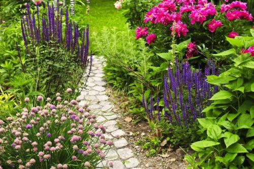 Сады 5781