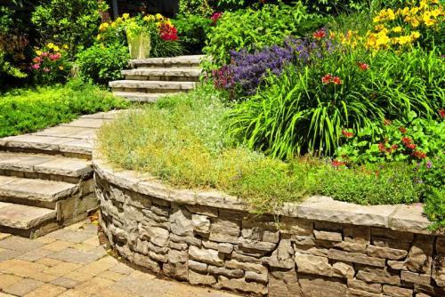 Сады 5785