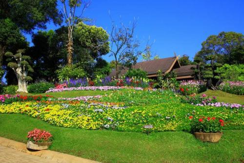 Сады 5789