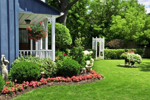 Сады 5791