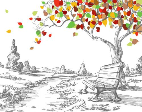 Рисунки карандашом 4185
