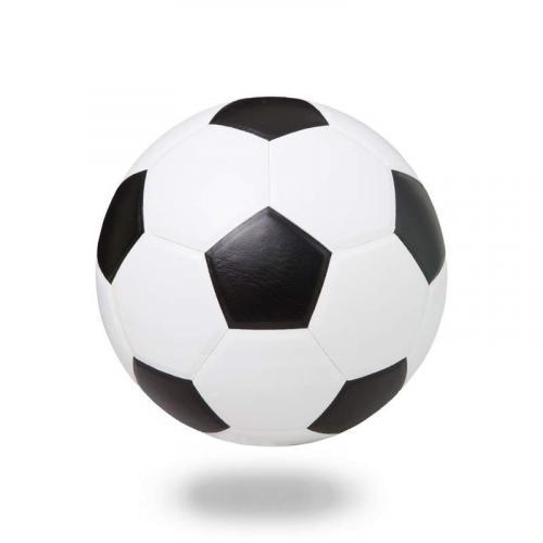 Спорт 8295