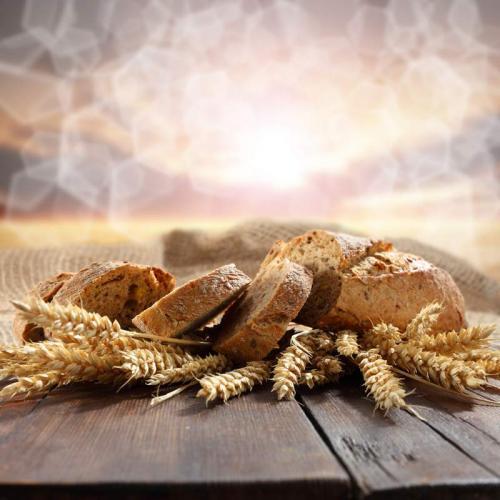 Пшеница 5980