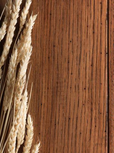 Пшеница 5985