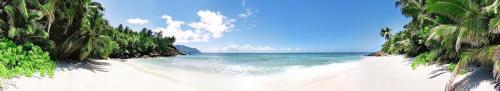 Пляжи  3871